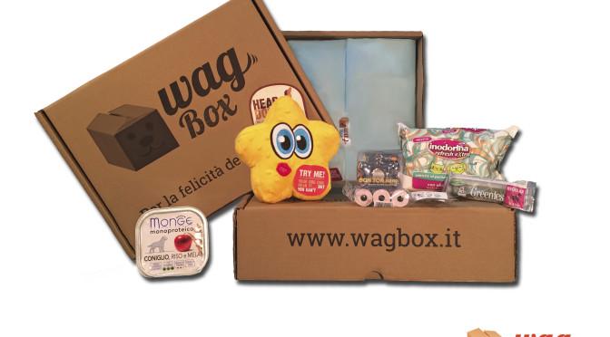 WagBox, Luca Scali racconta le box dei nostri amici animali